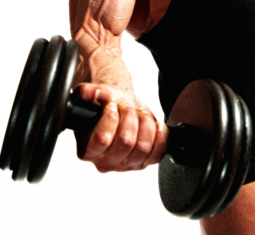 biceps training tips